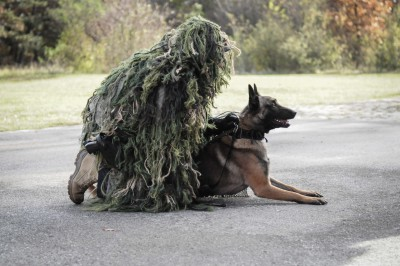 Exercise K9 Unit, COBRA Special Ops, Austria