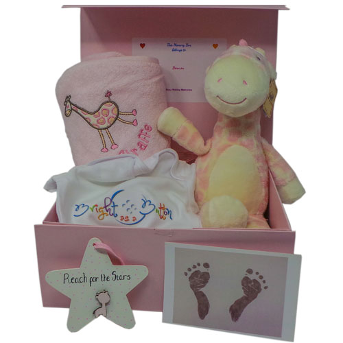 large pink giraffe box