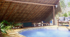 Playgrounds Surf Camp Pool / Lounge