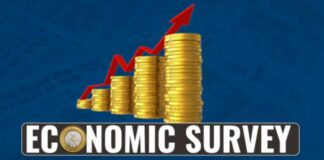 economy survey 18-19