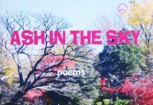 Ash In The Sky