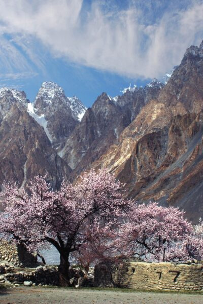 Fairy Meadows Hunza Tour