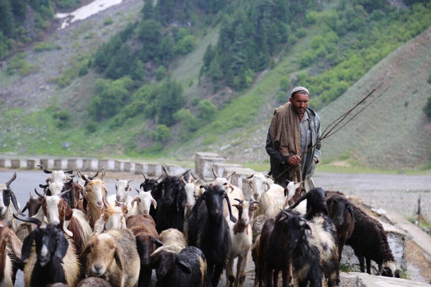 Normal-Life-in-Naran-Valley