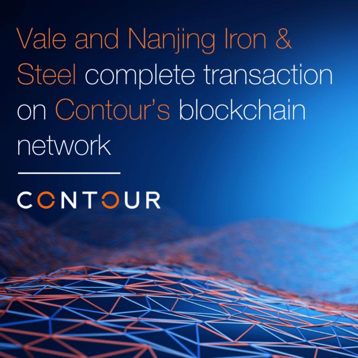 Nanjing Iron & Steel Group