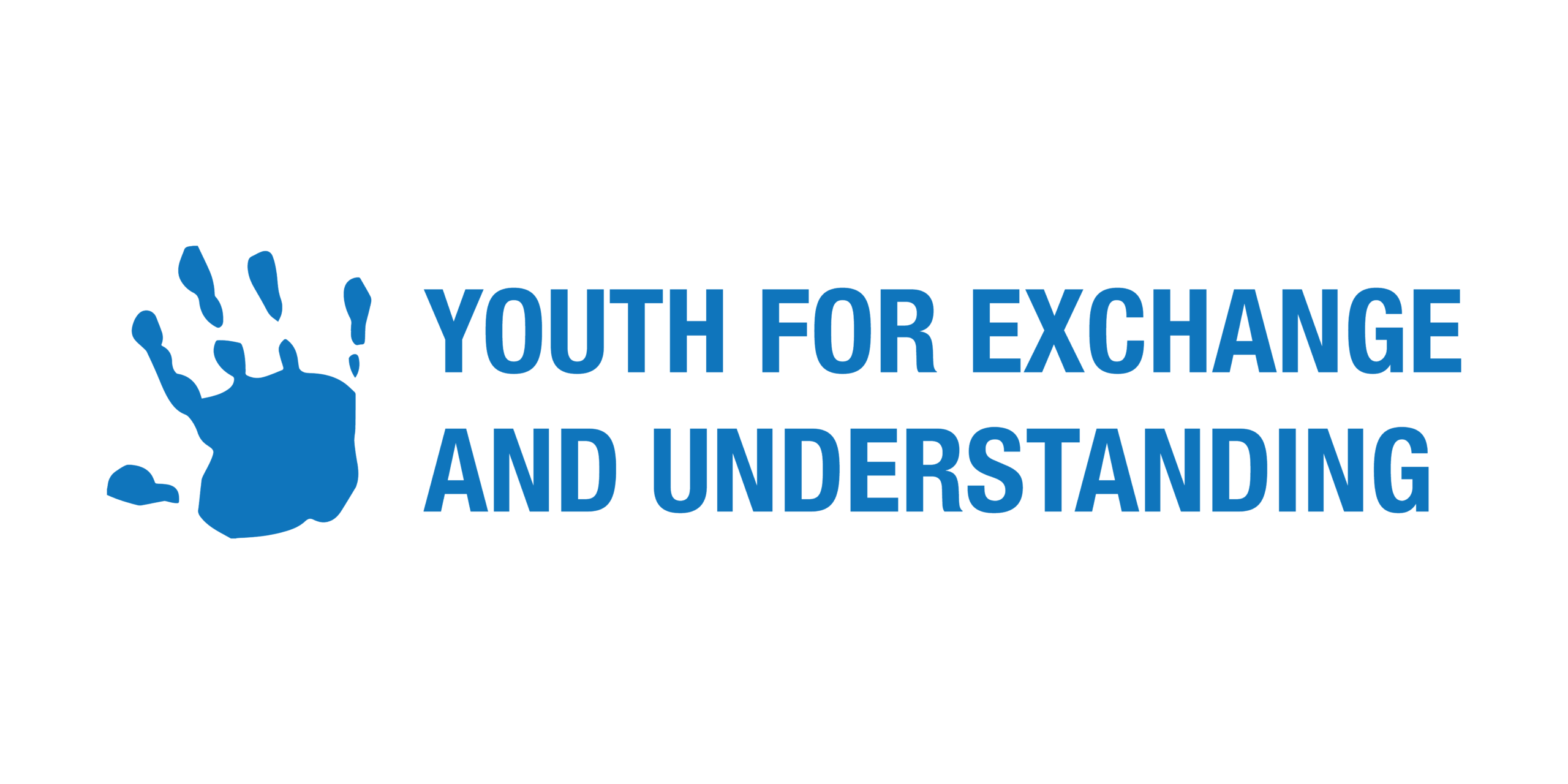 Call for YEU Working Groups 2021