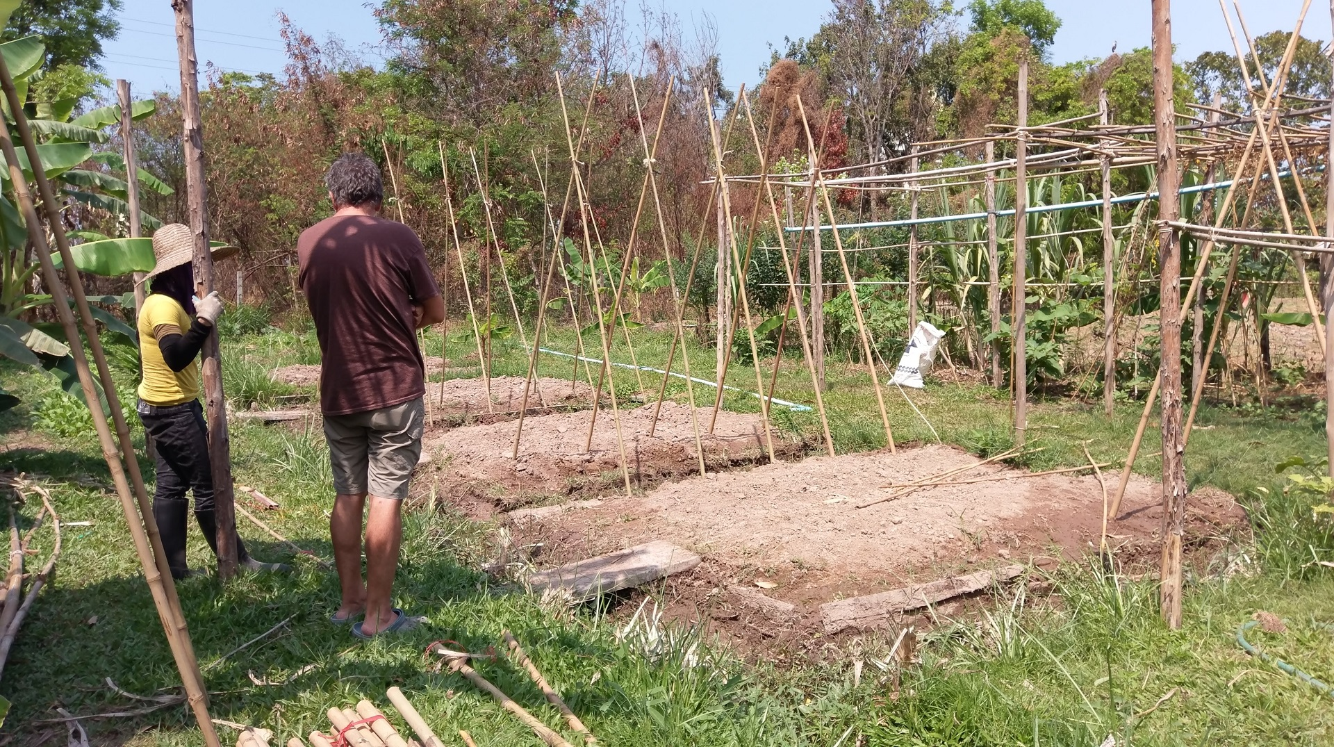 Chinampas at Daruma, a permaculture designed educational ecovillage in Thailand