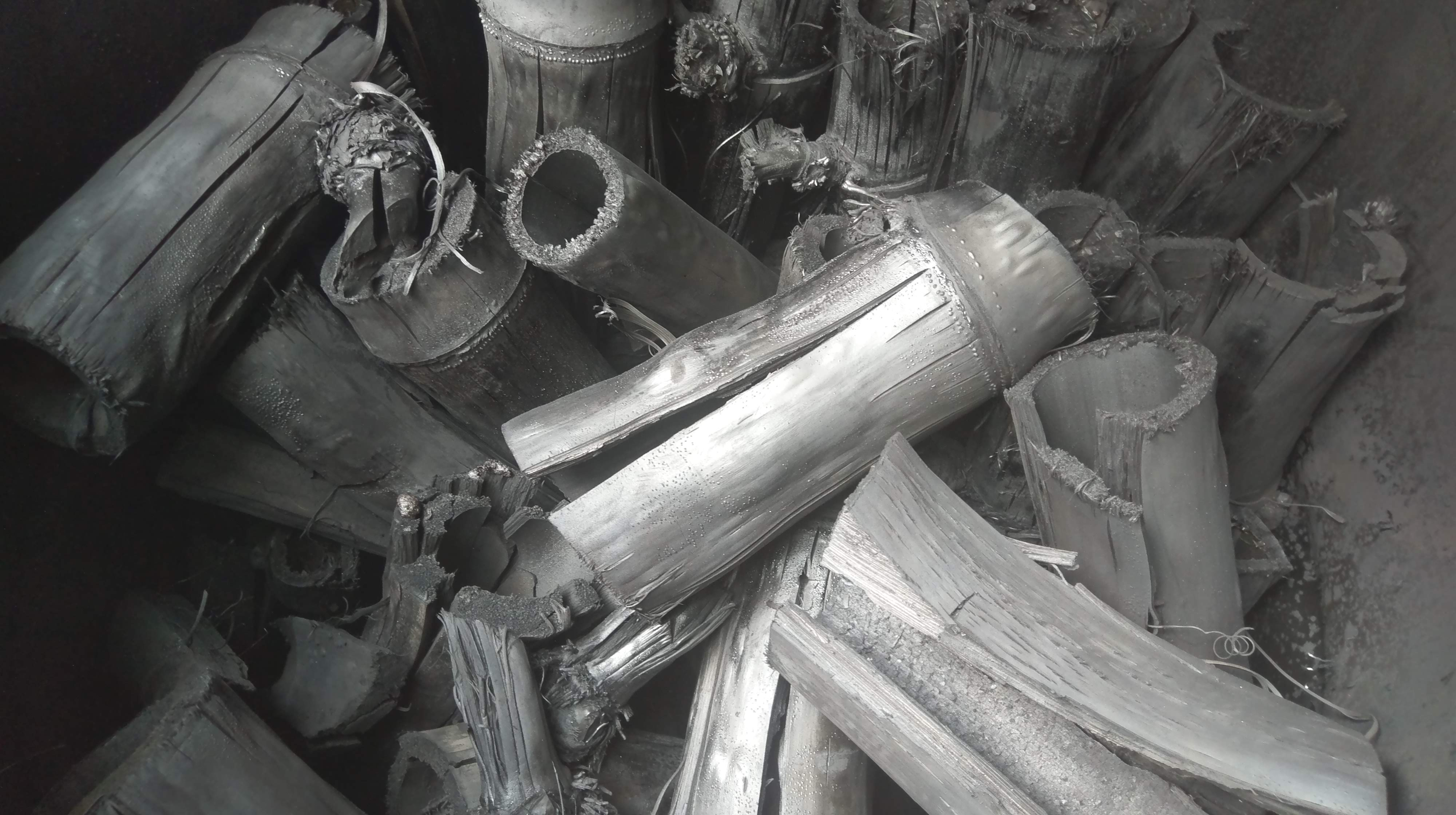 permaculture courses thailand, bamboo charcoal