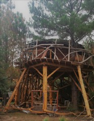 International Treehouse Building Workshop