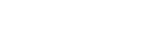 Excelsior Services Ltd