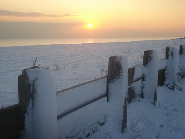 Beach in Snow