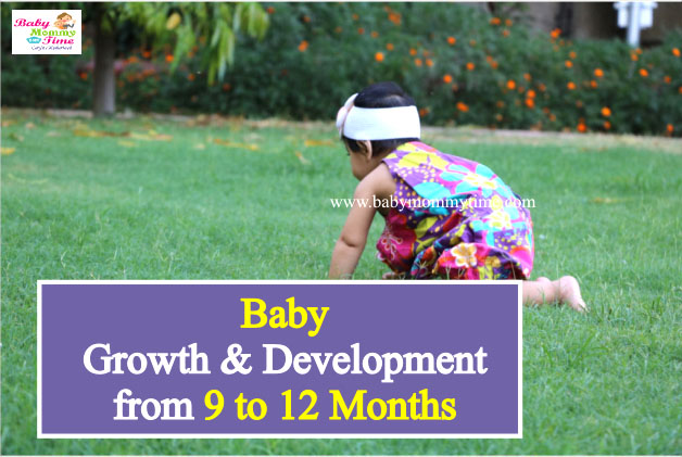 Baby Growth & Development from 9 to 12 Months