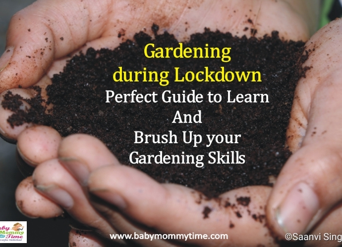 Gardening during Lockdown: Perfect Guide to Learn & Brush Up your Skills