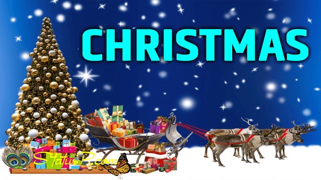 christmas-national-festivals-of-india