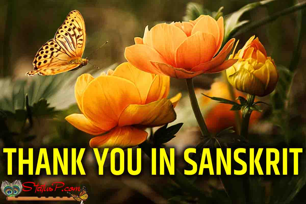 thank you in sanskrit