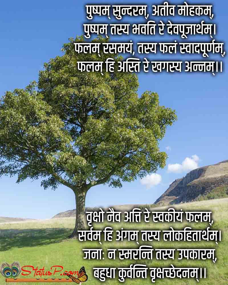 sanskrit poem on tree