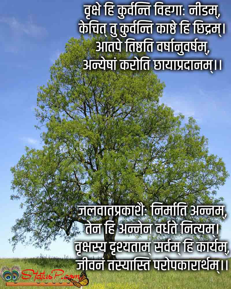 sanskrit poems on trees