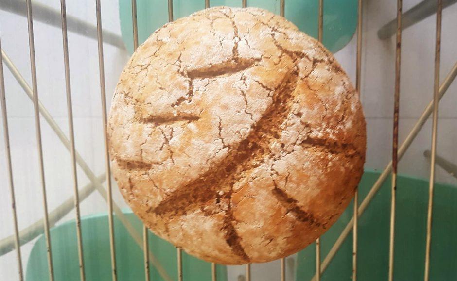 pan de sarraceno sin levaduras