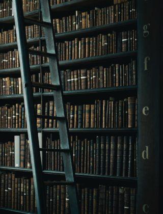 Η κλέφτρα των βιβλίων