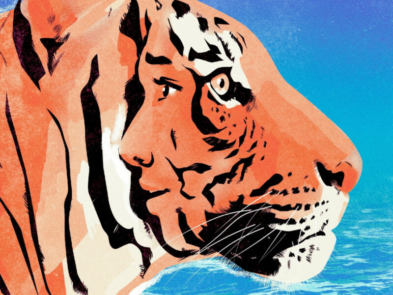 LIFE OF PI WEST END TRANSFER ANNOUNCED