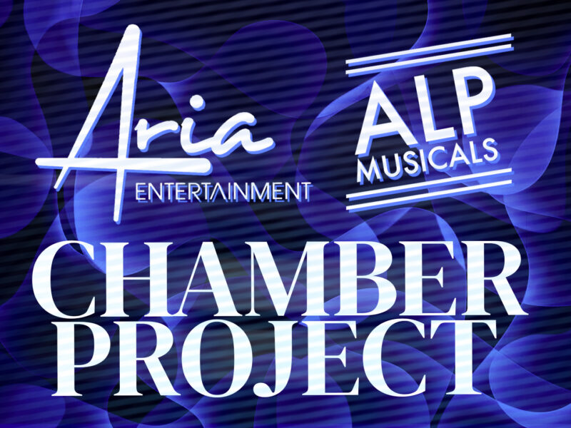 KATY LIPSON & ADAM LENSON ANNOUNCE LONGLIST OF NEW MUSICALS FOR CHAMBER MUSICAL PROJECT