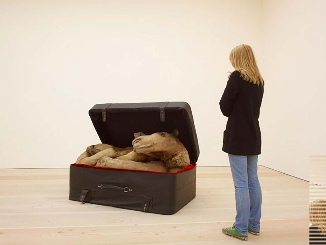 Guest viewing Huma Mulji's Arabian Delight at the Saatchi Gallery. Image courtesy of the Saatchi Gallery, London © Stephen White