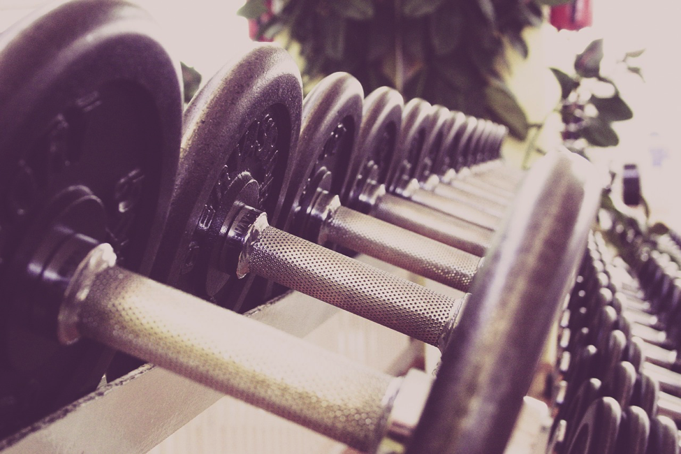 Building Muscle The Right Way