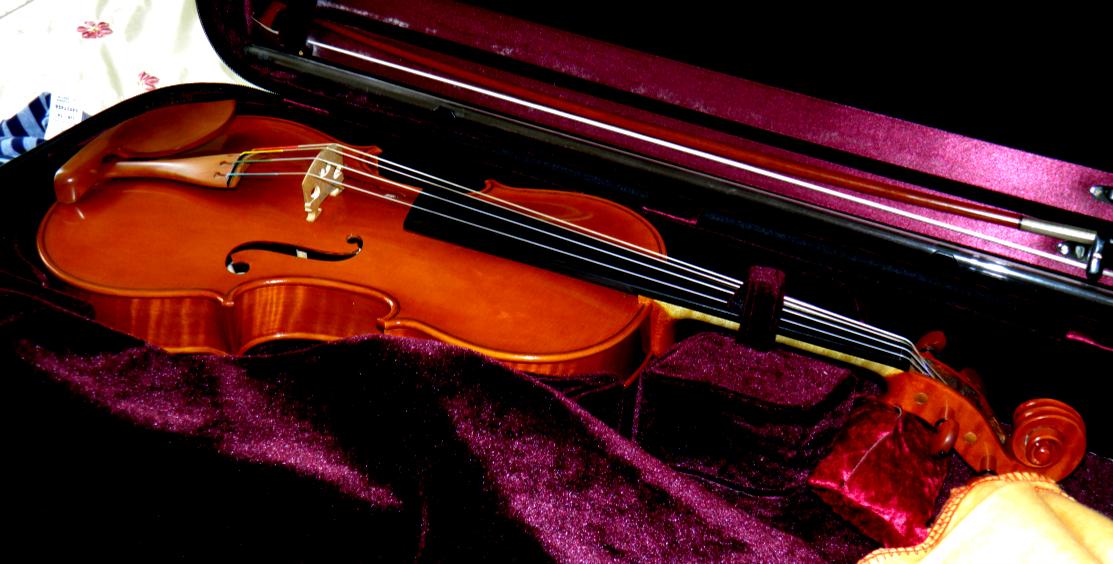 Rudolf Pilsel Hand crafted Violin