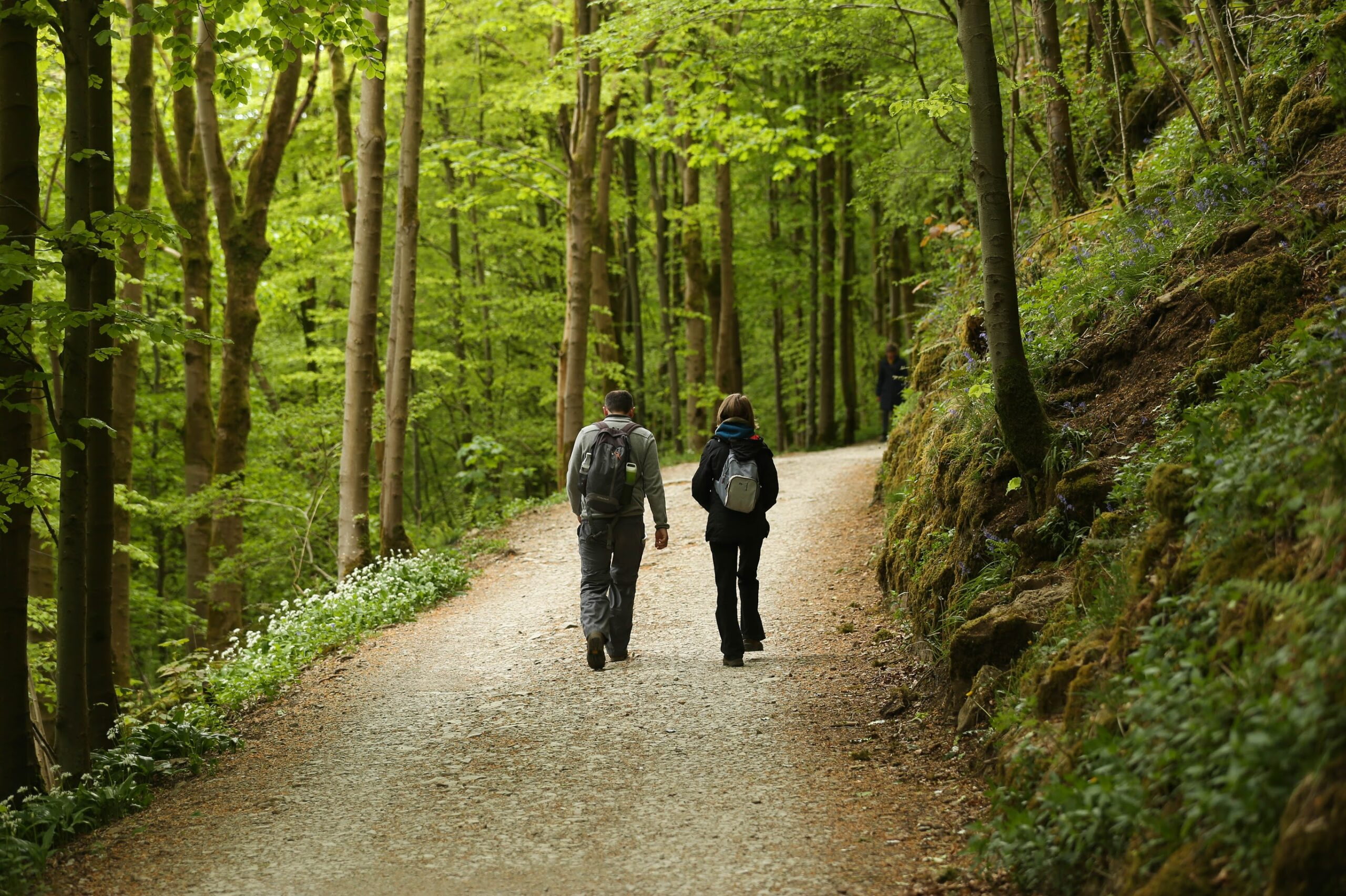 10 things to look out for on The Ingleborough Estate Nature Trail
