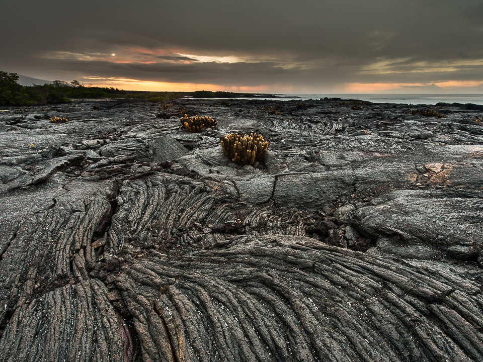 Lava rocks at sunset - D800, 14-24mm, 1 sec, f/11 @ ISO 100