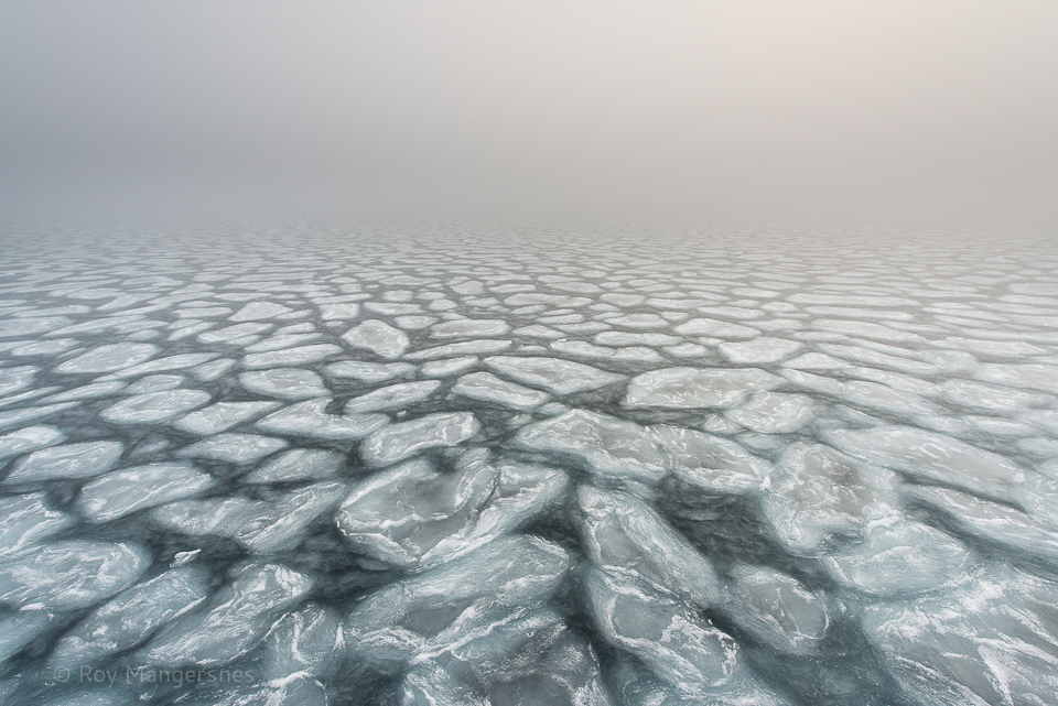 The birth of ice - D800, 14-24mm, 1/320 sec, f/8 @ ISO 400