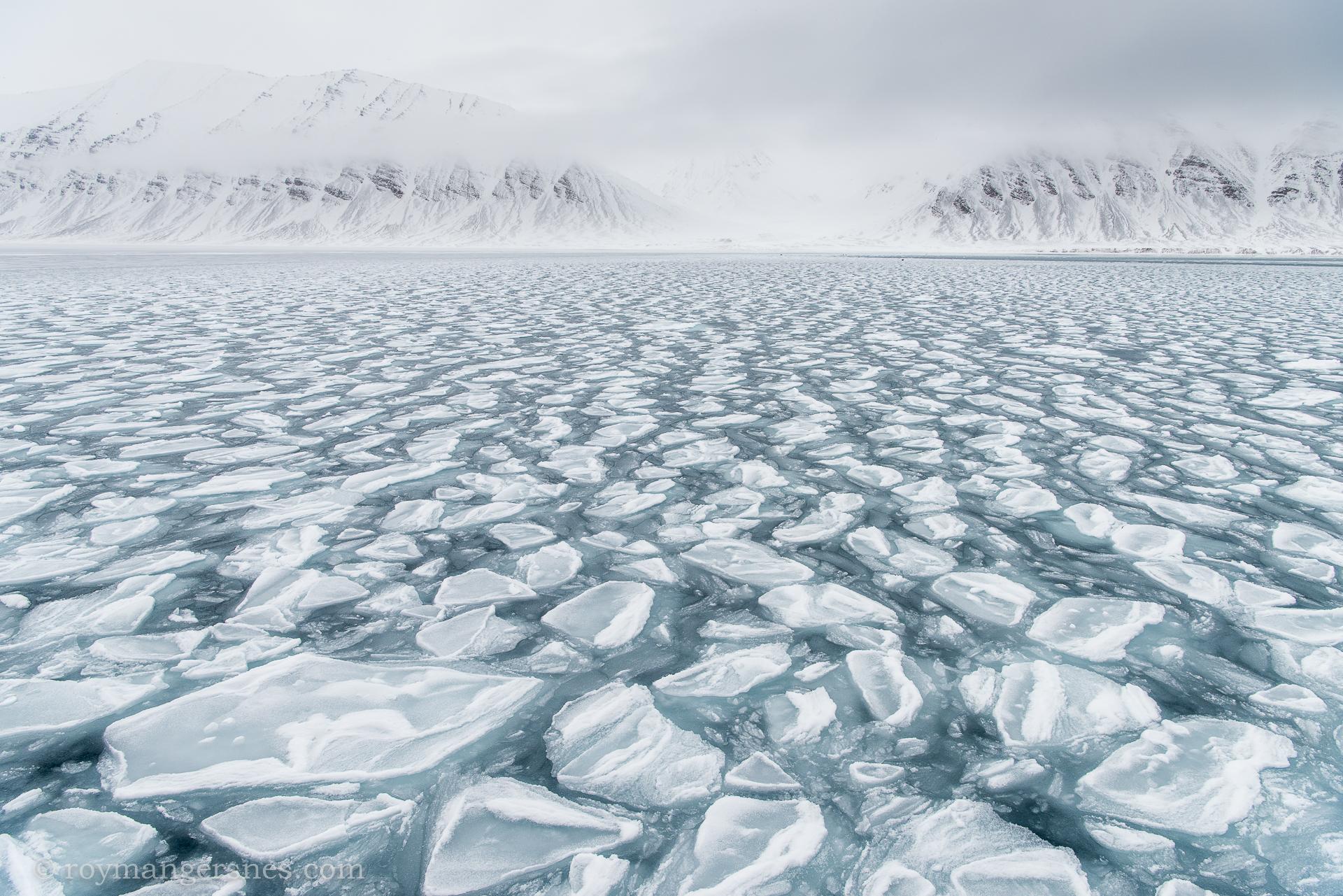 Svalbard Widjefjorden_Winter2