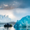 Trip report Svalbard 25.07-04.08 2020
