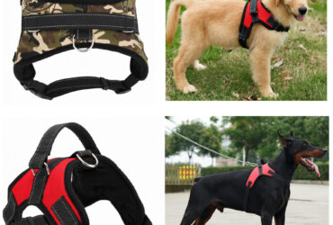 Dogs Harness Collar