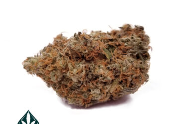 Island Pink by QueIsland Pink by Queen of Quads – Indica Dominant Hybrid – AAAA+en of Quads – Indica Dominant Hybrid – AAAA+