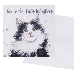 You're the cat's whiskers