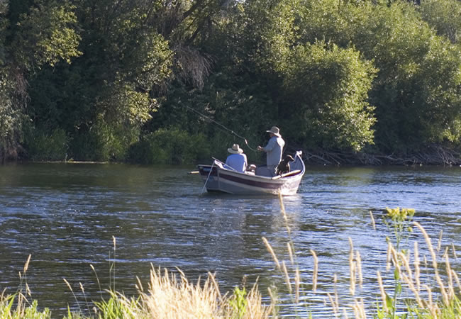Guided Fishing Tours