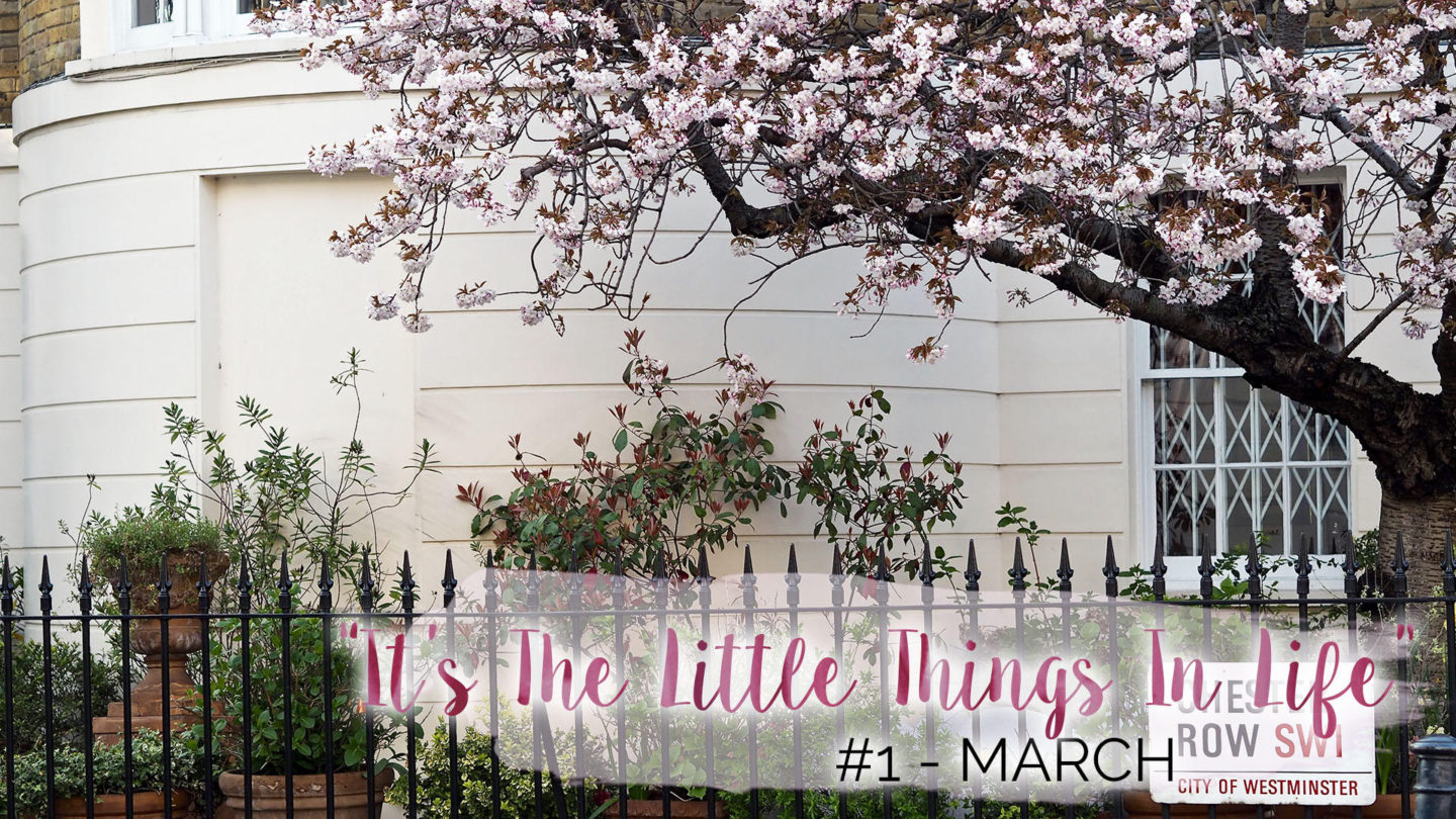 """""""It's The Little Things In Life"""" - #1 - March    Life Lately"""