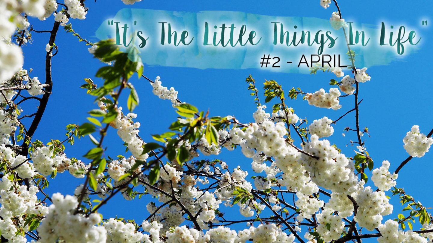 """""""It's The Little Things In Life"""" - #2 - April 