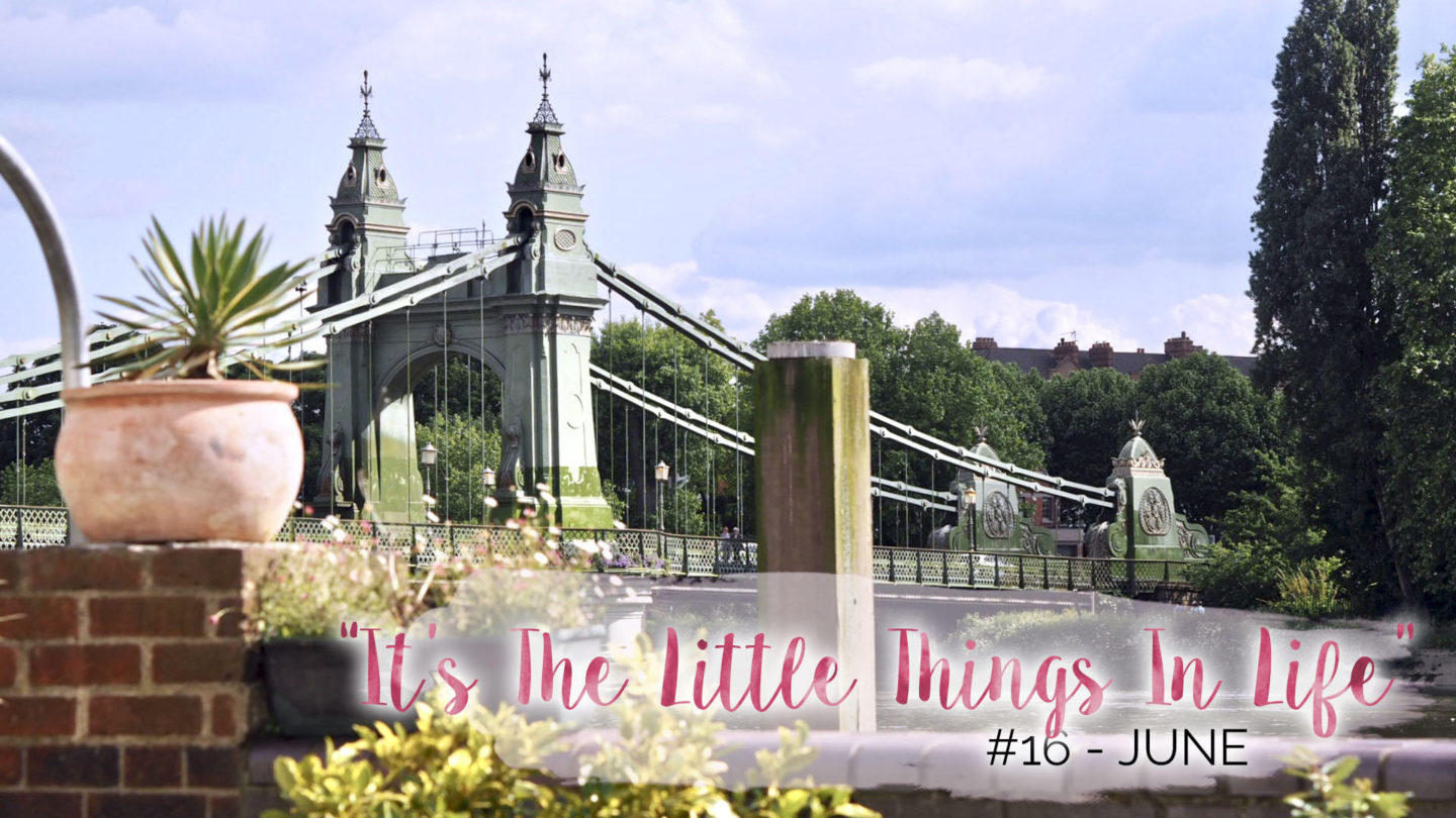 """""""It's The Little Things In Life"""" - 16 - June 