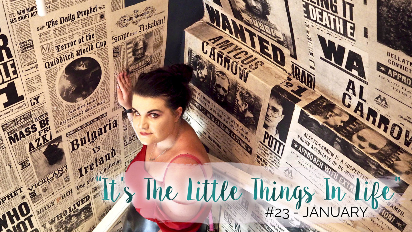 """""""It's The Little Things In Life"""" – 23 – January 