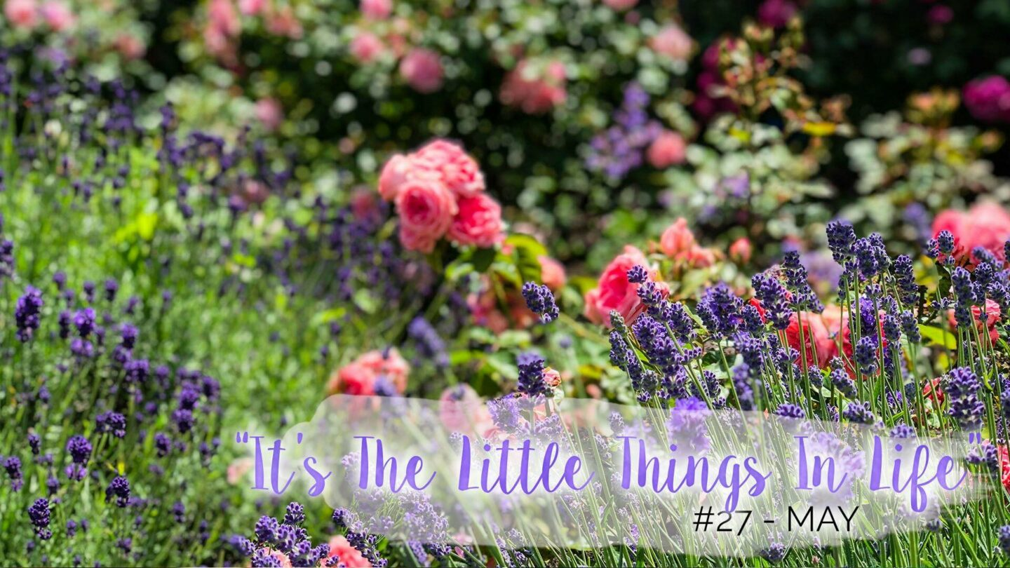 """""""It's The Little Things In Life"""" – 27 – May 