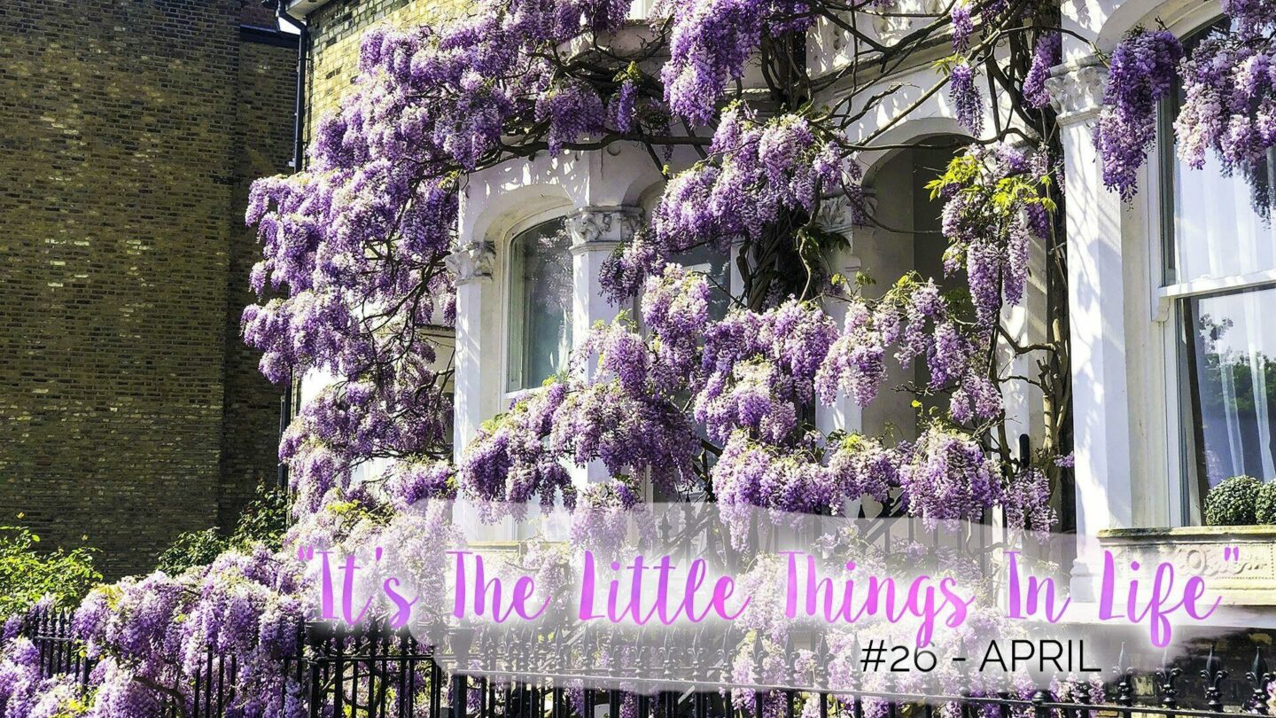 """""""It's The Little Things In Life"""" – 26 – April 