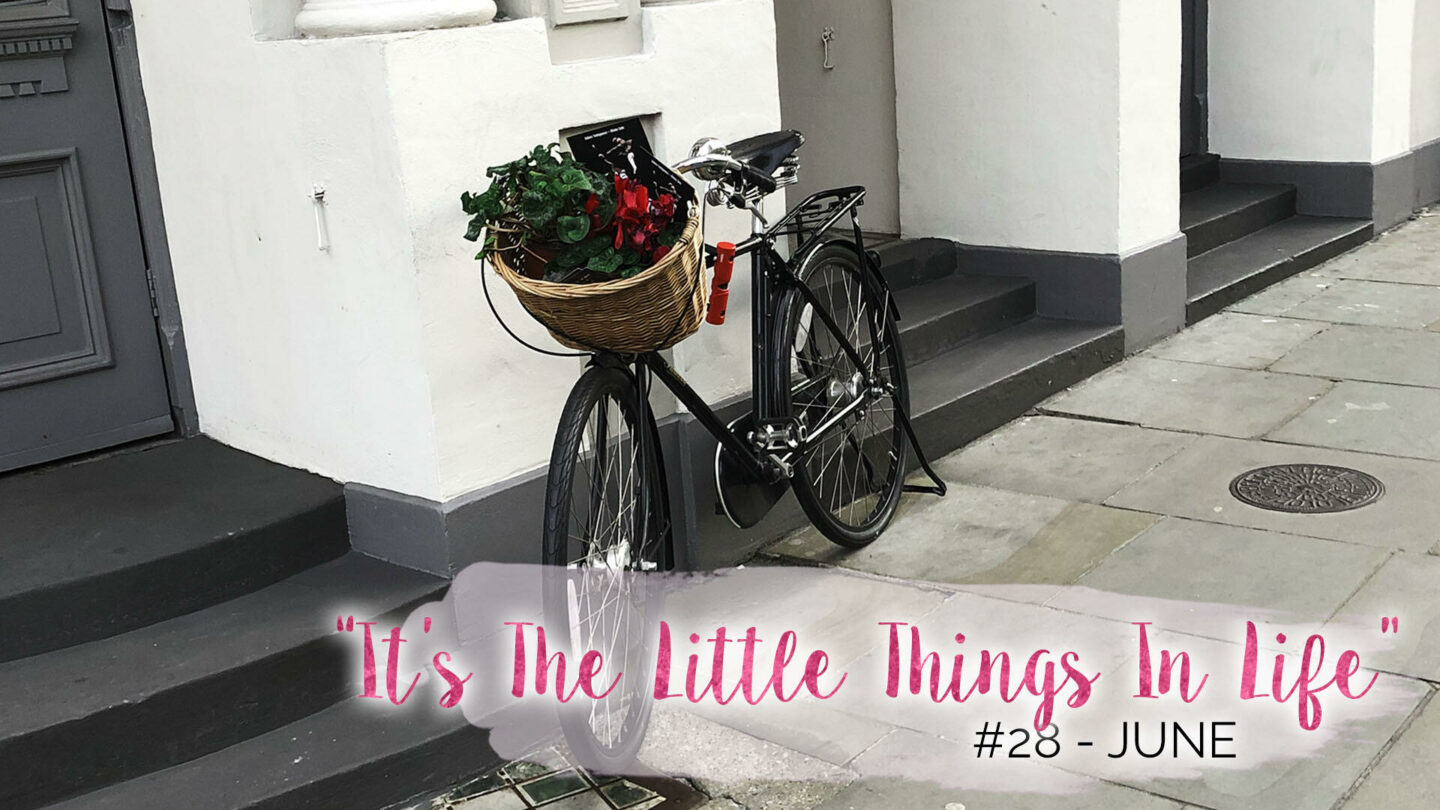 """""""It's The Little Things In Life"""" – 28 – June 
