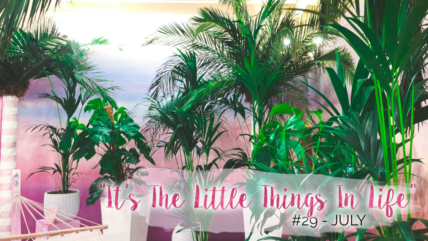 """""""It's The Little Things In Life"""" – 29 – July 
