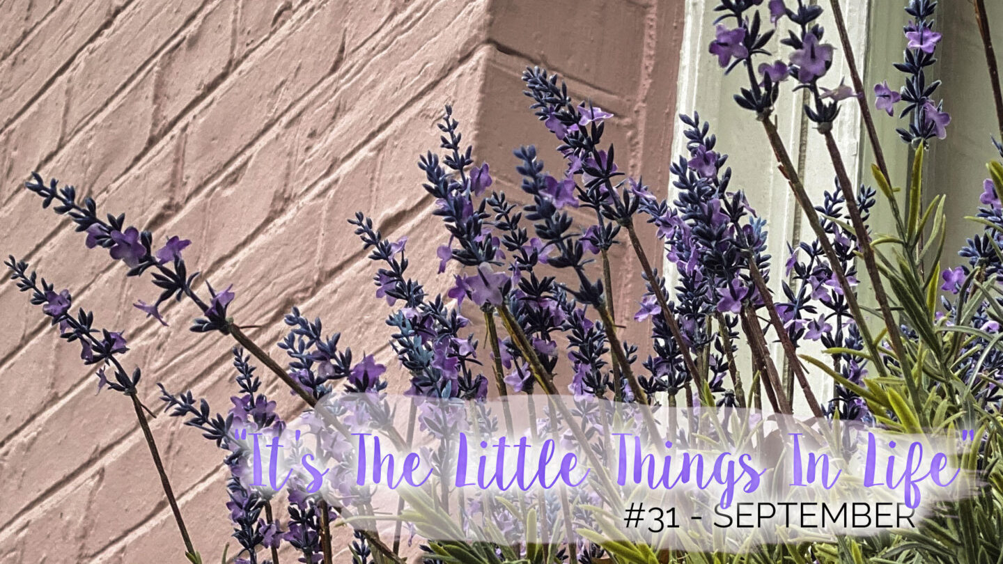 """""""It's The Little Things In Life"""" - 31 - September 