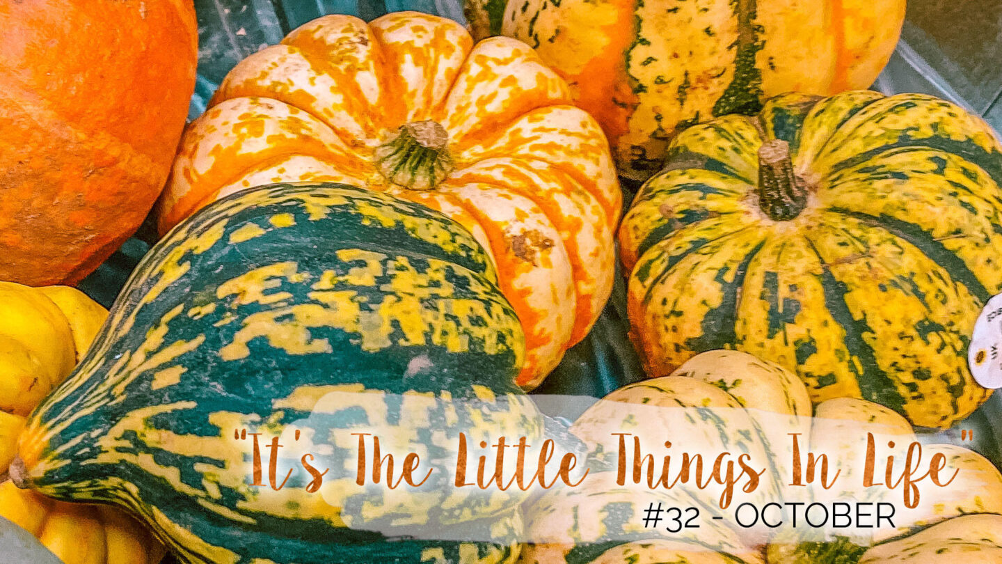 """""""It's The Little Things In Life"""" - 32 - October 