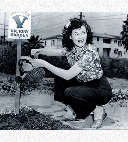 Victory Gardens & Significant Days: Focusing on Fruitfulness, By: Lacey Haegen