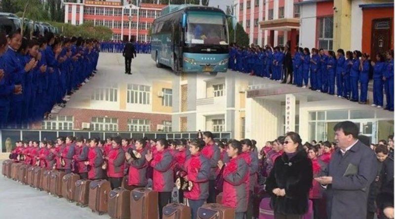 Çin 1 Milyon 760 bin Uygur Türkünü iç kesimlerine sürgün edip köle olarak çalıştırıyor