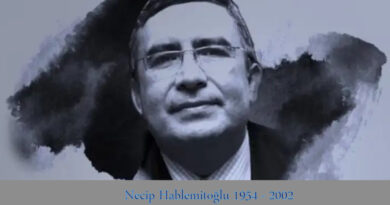 necip haplemitoğlu 1954 - 2002