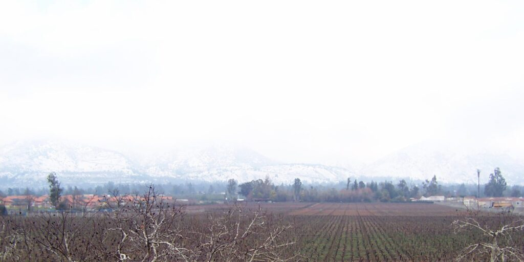 Viña Aquitania, Chile | professional Spanish translation services for the wine industry